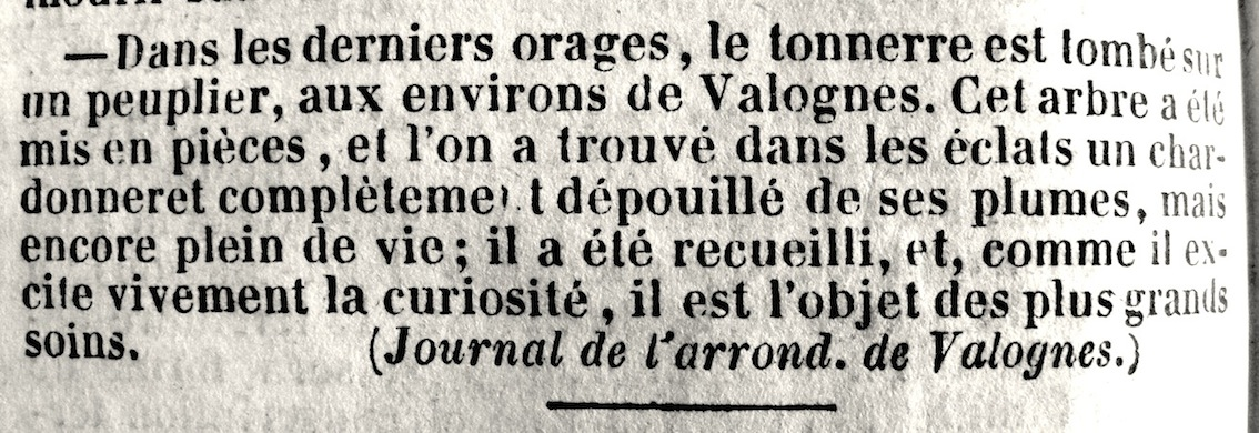 1- Le Journal d'Avranches, septembre 1842.JPG