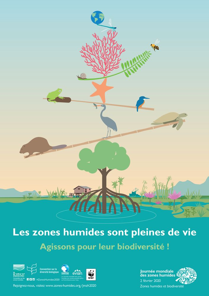 Affiche nationale de la journée mondiale des zones humides 2020