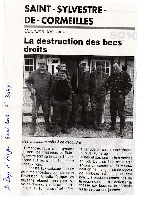 Destruction des becs droits.jpg